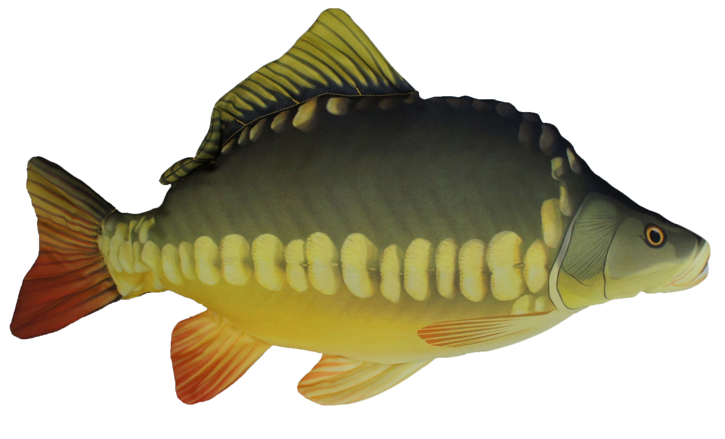 Gaby carp fish pillow glasgow angling centre for Fish shaped pillow