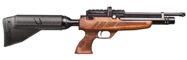 NP-02 PCP Air Rifle