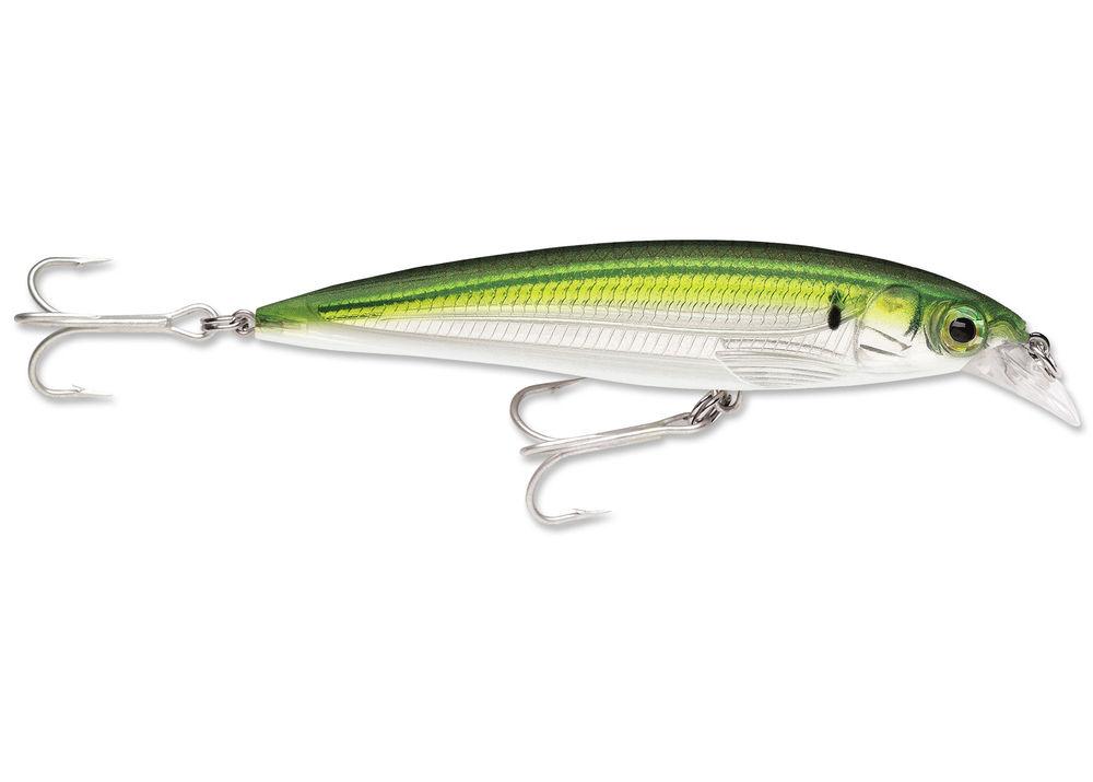 Rapala X-Rap/® Saltwater Fishing Lure 13g Baitfish, 14 CM 14cm 10cm 43g