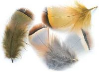 Veniard French Partridge Flank Hackles