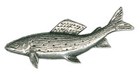 Just Fish Pewter Grayling Lapel Pin