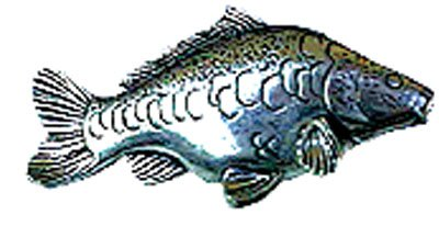 Just Fish Pewter Lapel Pin Mirror Carp
