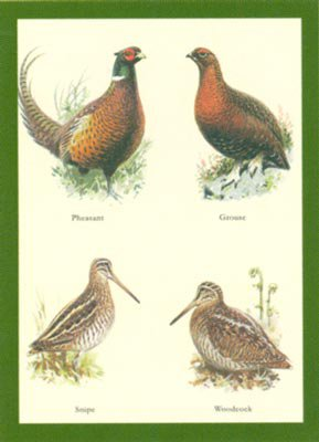 Just Fish Pheasant, Grouse, Snipe,  Woodcock Greetings Card