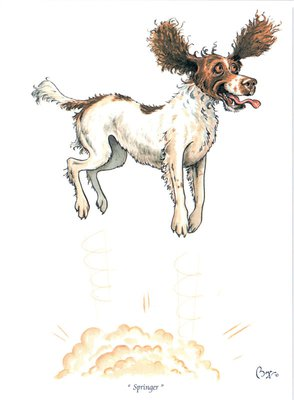 Just Fish Springer Spaniel Greetings Card
