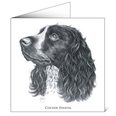 Mayfly Art Cocker Spaniel Greetings Card