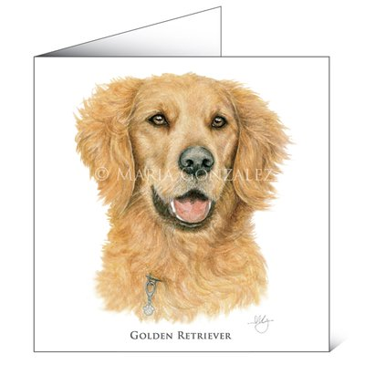 Mayfly Art Golden Retriever Greetings Card