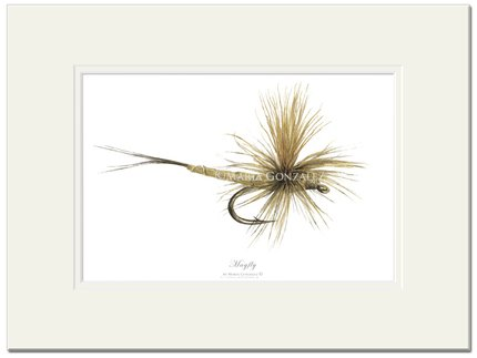 Mayfly Art Mayfly Signed Print