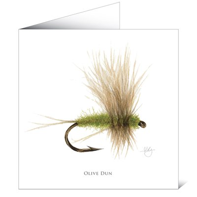 Mayfly Art Olive Dun Greetings Card