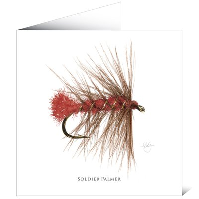 Mayfly Art Soldier Palmer Greetings Card