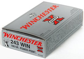 WINCHESTER 20pk 243 Win 100G Power Point
