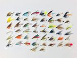 Stillwater Assorted Wet Flies x 50