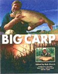 Just Fish Big Carp