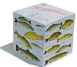 Just Fish Padblock Message Cube - River Fish
