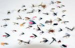 Stillwater 50 x Assorted River Flies